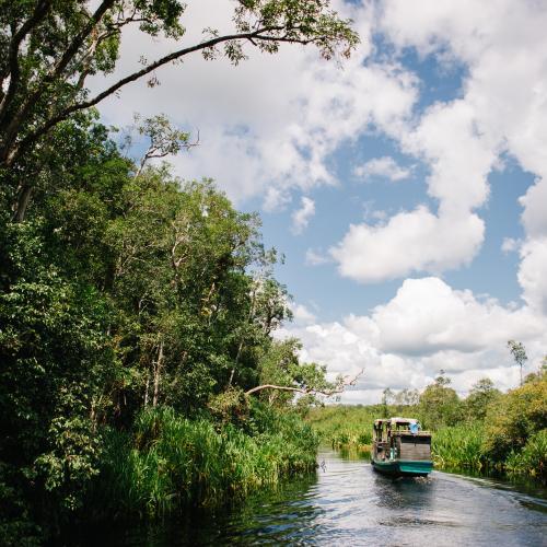 Borneo Eco Tour