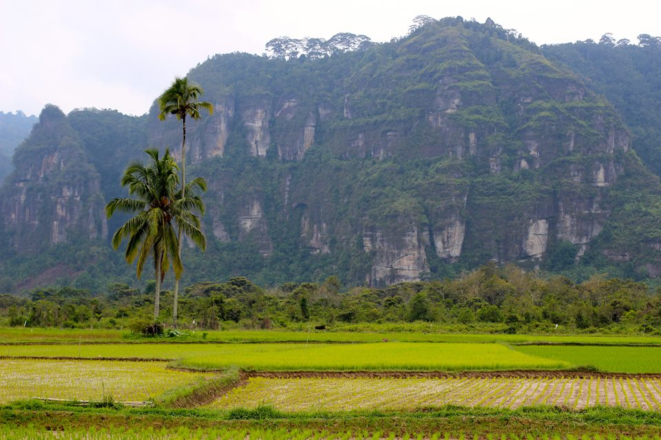Exotic Indonesia. Voyage Indonésie sur mesure  | Indonesia Exotic